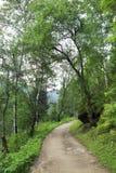 Path for hiking on a mountain slope Sinyuha. Altai Krai Royalty Free Stock Photography
