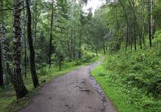Path for hiking on a mountain slope Sinyuha. Royalty Free Stock Photo