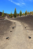 Path for hiking, Tenerife Stock Images