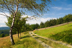 Path on the hill Stock Photography