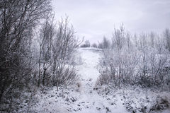 The path of the hill. The path through the winter park, located on the top of the hill Royalty Free Stock Image