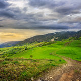 Path on hillside meadow in mountain Stock Images