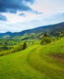 Path on hillside meadow in mountain. Summer landscape.Meadow path on the hillside. Forest in fog on the mountain Royalty Free Stock Images