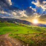 Path on hillside meadow in mountain at sunset Stock Photography
