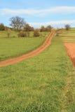 Path on the horizon royalty free stock photo