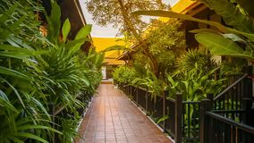 Path on the hotel stock footage