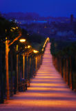 Path illuminated with lampposts at night Royalty Free Stock Image