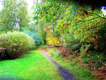 Path In A Beautiful Autumn Park Stock Photos