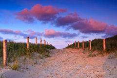 Path In The Sand Dunes At Sunset Royalty Free Stock Photos