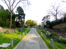 A path inside Zhongshan Park Royalty Free Stock Images