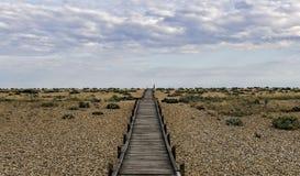 Path Stock Photos