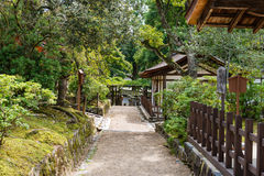 Path through Japanese forest in early Autumn. Path through a dense Japanese forest surrounded by small wooden houses in Nara in early Autumn, with some leaves Stock Photography