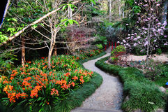 Path through Japanese garden in spring. The winding path into a Japanese garden leads to a red small red bridge over a stream and is taken in early spring in a Stock Photos