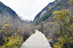 Path , Jiuzhaigou Royalty Free Stock Photography