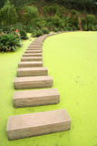Path in lake Stock Photos