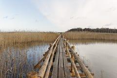 Path on lake surface. Royalty Free Stock Photos
