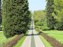 Path through the landscape park. Beautiful path through the landscape park Stock Photos