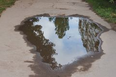 Path with large puddle. And reflection of trees Royalty Free Stock Images