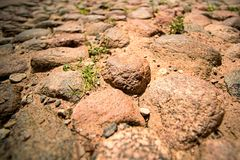 Path from large stones with grass Royalty Free Stock Photo