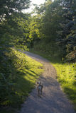 Path. A late summer walk along a path Royalty Free Stock Photography