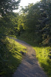Path. A late summer walk along a path Royalty Free Stock Image