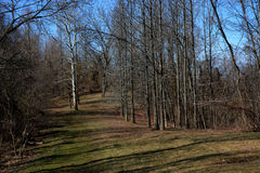 Path in late winter. A wide path for hiking in the late winter season Royalty Free Stock Photo