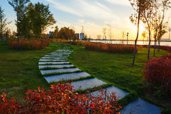 The path on the lawn Royalty Free Stock Photos