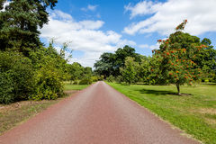Path leading through Beautiful Summer Garden Stock Photos