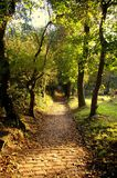 Path leading down from a churchyard, Prestwich stock photos