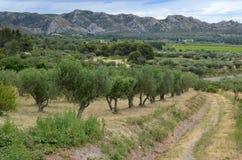Path leading through Provencal mountains Royalty Free Stock Image
