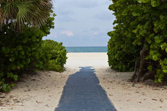 Path leading to the beach Stock Photo
