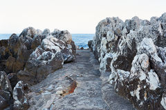 Path leading to the blue sea, rocks Royalty Free Stock Photo