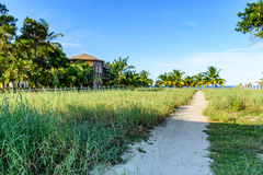 Path leading to Caribbean beach Royalty Free Stock Photography