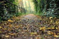 Path Stock Photography