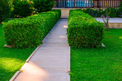 Path leading to the house Stock Photography