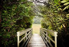 Wooden Bridge Crossing To an Open Meadow. Path leading to an open meadow. Vegetation, trees, wooden bridge, new beginning royalty free stock photography