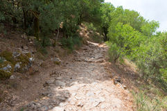 The path leading to the Psychro Cave. The Crete island,Greece. Stock Photo