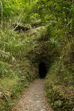 Path leading to a small and dark tunnel in a rock Royalty Free Stock Photography