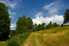 A path. Stock Photos
