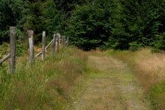 A path. Stock Photo