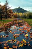 The path of the leaves stock images