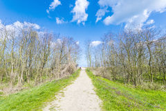 Path on a levee at the Baltic Sea Stock Photo