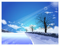 The path of the light shining in winter Stock Photo