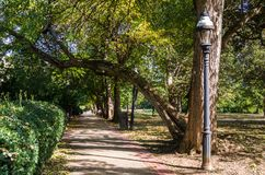 Path Lined with Trees on a Sunny Day. Tree Lined Path with Stylish Lamp Posts in a Public Park on a Sunny Autumn Day.  Georgetown, Washington DC Royalty Free Stock Photography