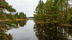 Panoramic view royalty free stock image