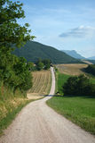 The long path Royalty Free Stock Images