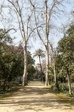 Path in MariaLuisa park royalty free stock photo