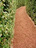 Path in a maze. Path in a hedge maze Royalty Free Stock Image