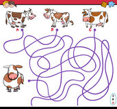 Path maze game with cows Royalty Free Stock Images