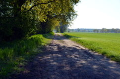 Path at a meadow in germany Stock Photo